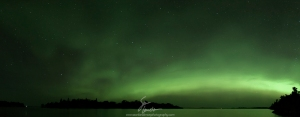 A four image panorama of the Northern Lights arcing over Lake of the Woods, Ontario.